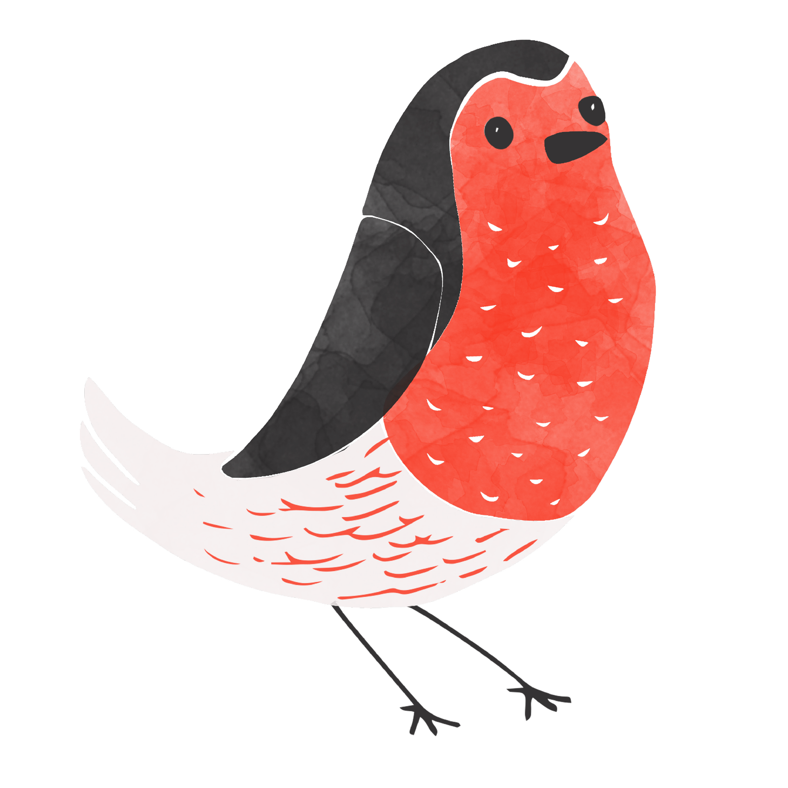 An illustration of a robin with a large red chest.